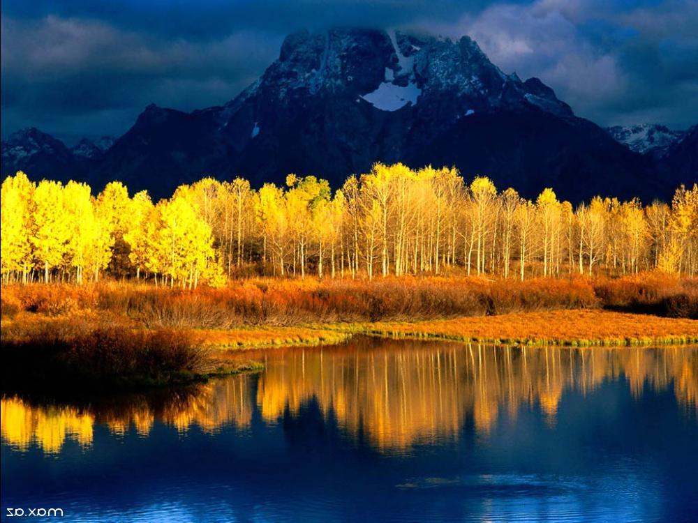 Диктант Осенью