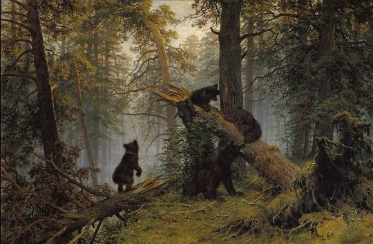 Утро в сосновом лесу сочинение по картине